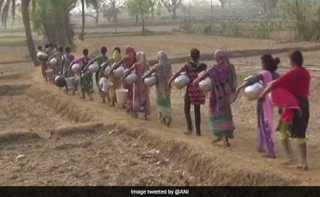 A Long Walk To Water For Odisha's Rural Women
