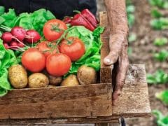 World Health Day 2018: 4 Health Benefits Of Switching To Organic Food