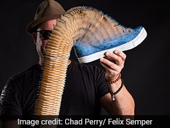 The Artist Behind The Stretchable Paper Sculptures You Keep Seeing On Social Media