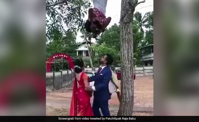 World's Most Dedicated Wedding Photographer Hangs From Tree To Click Pics