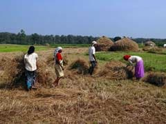 Government Likely To Raise Rural Welfare Spending By 16%: Report