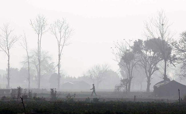 Concerned About India, It Should Follow China On Anti-Pollution Steps: WHO