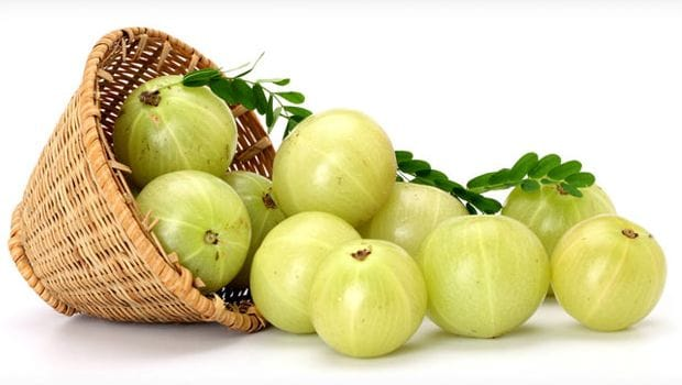 Benefits of Amla: health benefits of amla gooseberry in hndi
