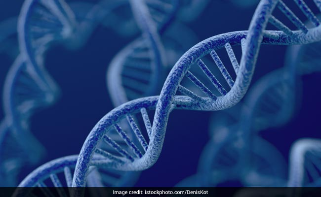 Genetic Testing: Know All About The Importance Of Genetic Testing