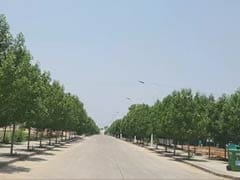 A Telangana 'Hospital' That Gives Dying Trees A Second Life