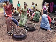 Here's Why Nearly 3 Lakh People, Mostly Women, Have Lost Jobs In Kerala