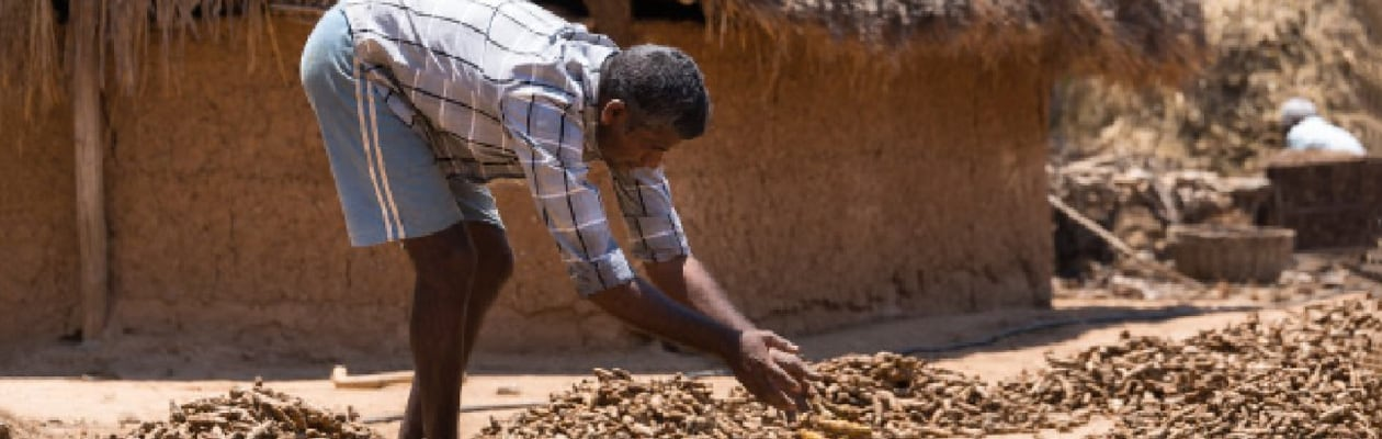 The Tribal Farmers Of Sittilingi Show Resilience In The Face Of Difficulty