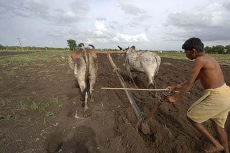 देश के 12 राज्यों में पानी का संकट, खरीफ फसल का रकबा घटा