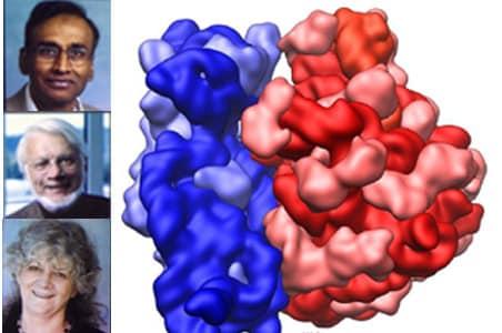 Indian-origin scientist wins Nobel chemistry prize