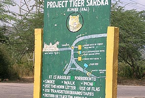 Sariska tiger death: 2 forest officials suspended