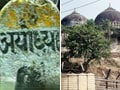 Ayodhya verdict: Waqf Board files appeal in Supreme Court