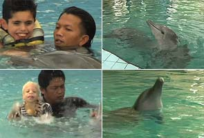 Dolphins help children with disabilities