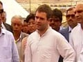An elephant in Lucknow is eating your money, says Rahul Gandhi in UP rally