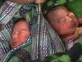 Denied help by two govt hospitals, she delivered twins on the pavement, then died