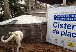 Harvesting The Rain Drop In Brazil