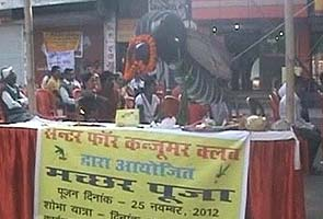 'Mosquito god' worshipped to ward off dengue