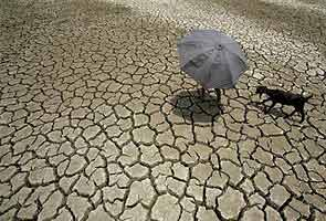 Kerala facing 'grim' drought, Government gears up machinery