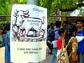 10 facts about Delhi University's four-year undergraduate programmes from this year