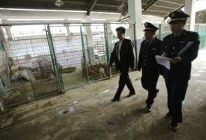 China reports latest bird flu death, toll rises to 27