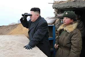 North Korea may have up to 200 mobile missile launchers: report