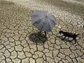 Six die in Assam as mercury soars to highest in 33 years