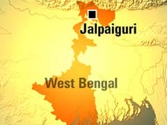Six elephants killed by train in West Bengal