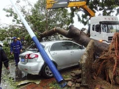 Typhoon Haiyan kills eight in China, devastates farming