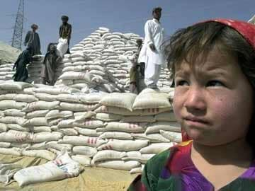 Indo-Pak nuclear war to 'end civilization' with famine: study