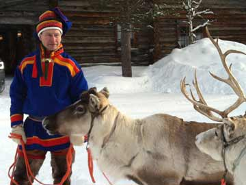 Things you didn't know about reindeer