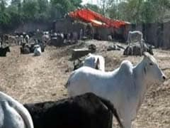 Producers threaten to stop supply of milk in Tamil Nadu from February 4