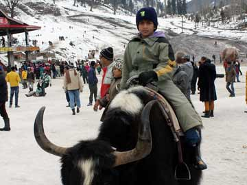 Shimla, Manali wrapped under white blanket