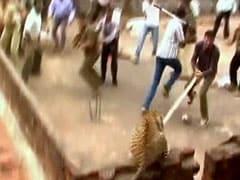 Caught on camera: leopard attack in Maharashtra village