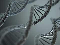 527 DNA tests for high school rape suspect