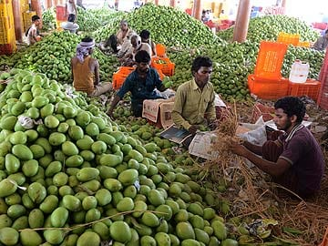 India irked by European Union ban on Alphonso mangoes