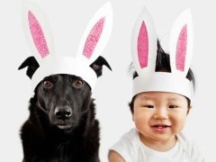 These photos of baby and dog in matching outfits are all you need to see today