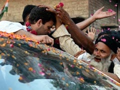 Will Give My Whole Life to Amethi: Rahul Gandhi to NDTV