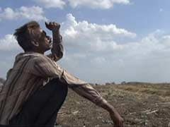 Poor Rainfall Could Cause Drought-Like Conditions in Parts of West India: Agriculture Minister