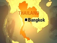 Interpol Seeks Clues to Thailand 'Baby Factory'