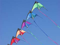 3 Dead After Kite Strings Slit Throats In Gujarat's Uttarayan Festival