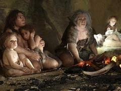 Neanderthals And Humans Interbred 100,000 Years Ago: Study