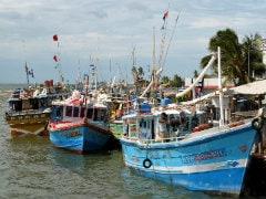 पाकिस्तान ने गुजरात तट के पास 12 भारतीय मछुआरों को पकड़ा