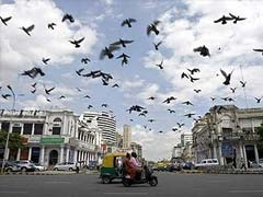 Connaught Place's Upkeep Takes Backseat Due to Delay in Contract Approval
