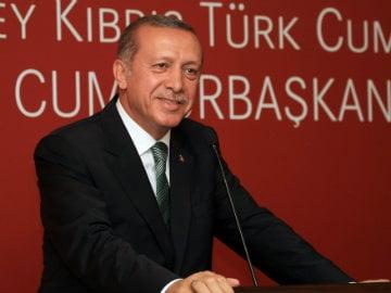 Turkey Will Fight Islamic State, Wants Syria's Assad Gone: President Erdogan