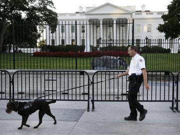 Racial Bias Seen Behind Lapses by Secret Service