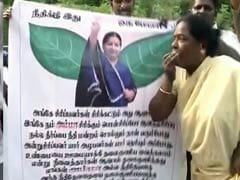 Jayalalithaa Granted Bail by Karnataka High Court in Corruption Case