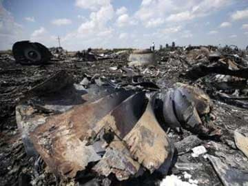 MH17 Prosecutor Open to Theory Another Plane Shot Down Airliner: Media Report