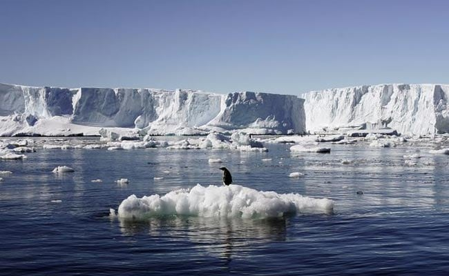 Scientists Confirm There's Enough Fossil Fuel on Earth to Entirely Melt Antarctica