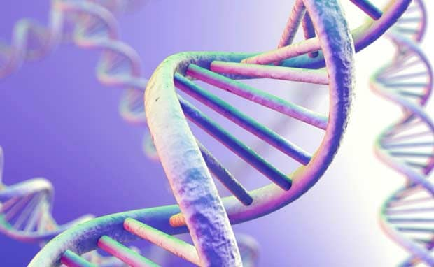 Genetic Ancestry Linked to Mate Selection