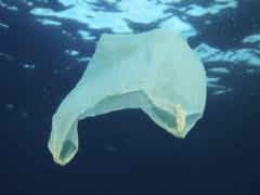 World's Oceans Laden With 269,000 Tons of Plastic: Study
