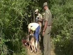 School boy Arrested for Murder in Vellore